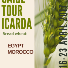 Barley tour to Morocco - date changes