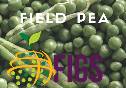 Field Pea FIGS sets in the AGG