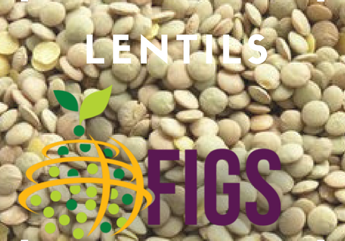 Lentil FIGS sets in the AGG