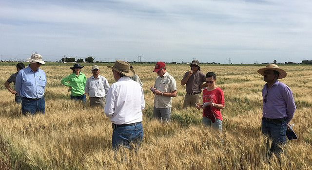 Photos from breeder tours 2016