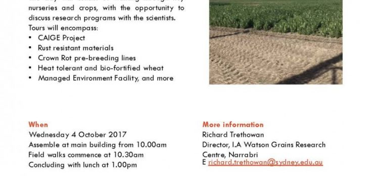 PBI Narrabri Pre-Breeding Field Day