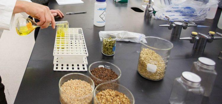 Barley quality data for 2017 trials
