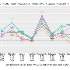 2020 CAIGE MET Results